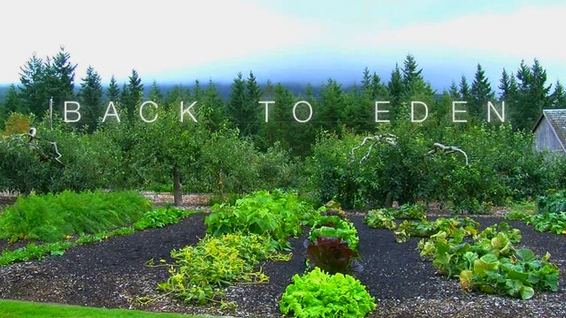 Back to Eden