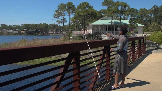 Coastal Dune Lakes: Jewels of Florida's Emerald Coast