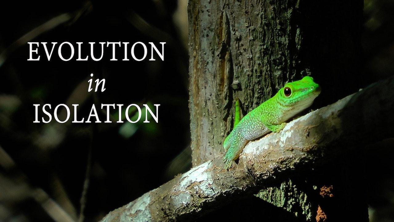 Evolution in Isolation
