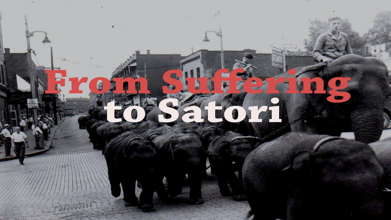 From Suffering to Satori