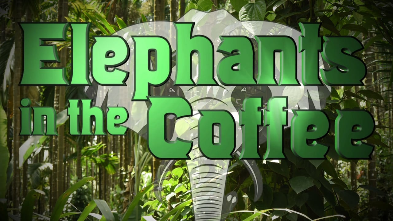 Elephants in the Coffee