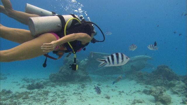 S2:E3 Bikini Destinations - Tahiti & Moorea