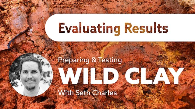 Wild Clay: Evaluating Results