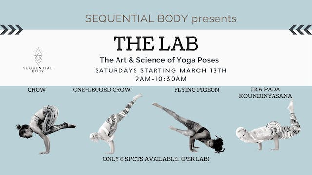 Sequential Body Lab: Eka Pada Koundinyasana