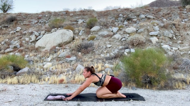 Root to Rise Yogis!