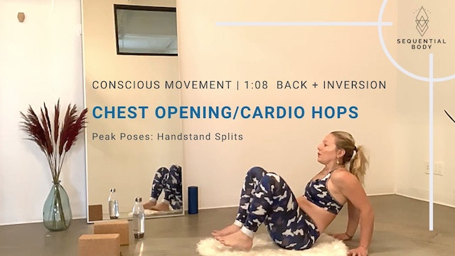 Conscious Movement   1:08 Strong Back + Handstand Splits