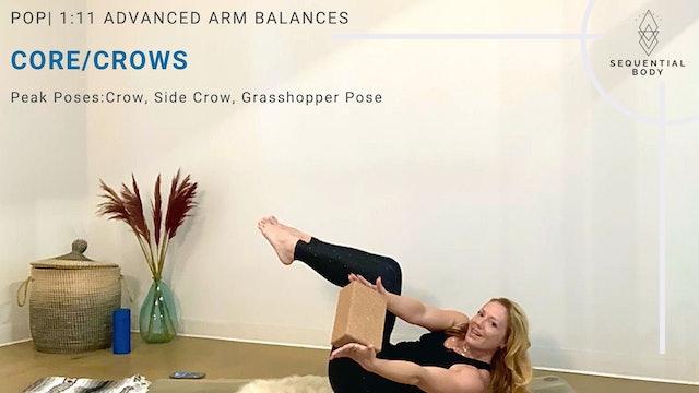 POP   1:11 Advanced Arm Balances