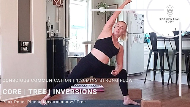 Concious Communication | 1:20 Strong Flow