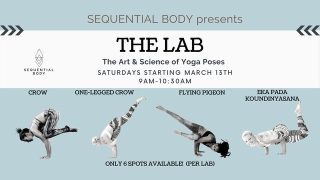 March 27th Lab: One Legged Crow & Variations