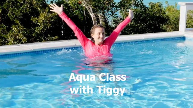 Aqua Fitness For A Total Body Workout