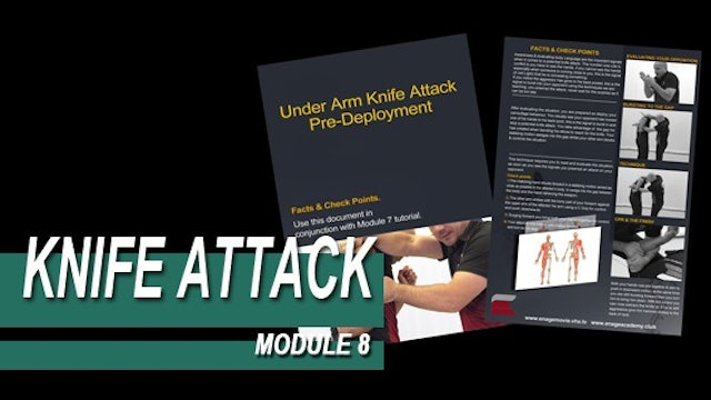 Knife Attack - Module 8 - Facts And Checkpoints