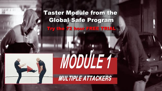 Training Module 1 - Multiple Attackers
