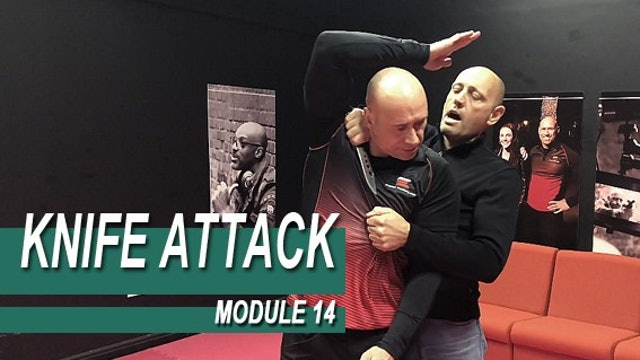 Knife Attack - Module 14 - Reality When Held From Behind