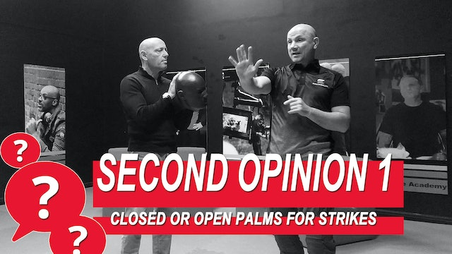 Second Opinion 1 - Closed Or Open Palms For Strikes