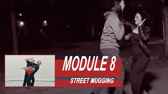 Training Module 8 - Street Mugging