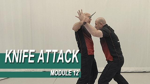 Knife Attack - Module 12 - Swinging Knife Attacks
