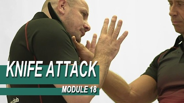 Knife Attack - Module 18 - Knife Threats From The Front