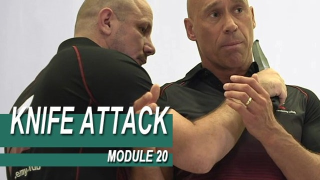 Knife Attack - Module 20 - Knife Threat From The Side