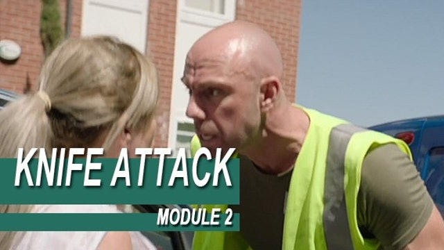 Knife Attack - Module 2 - The Human Factor