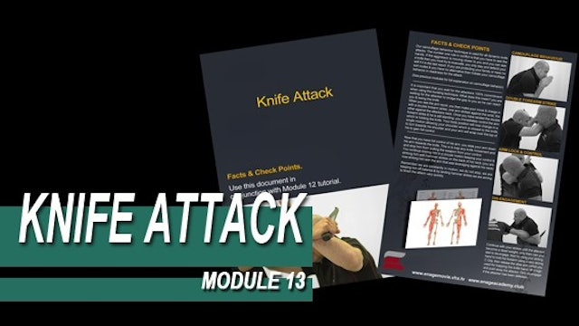 Knife Attack - Module 13 - Facts And Checkpoints