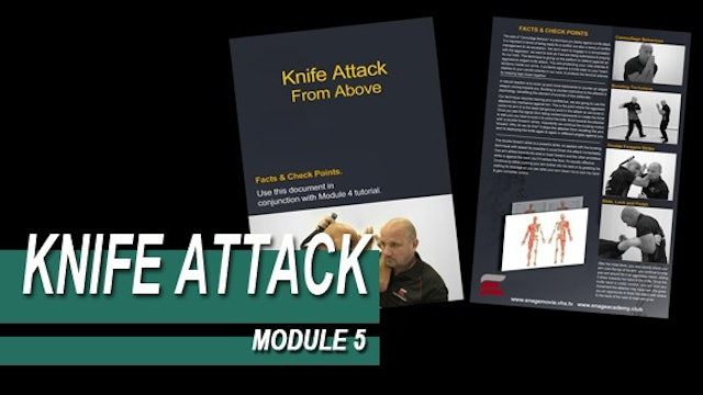 Knife Attack - Module 5 - Facts And Checkpoints
