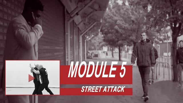 Training Module 5 - Street Attack