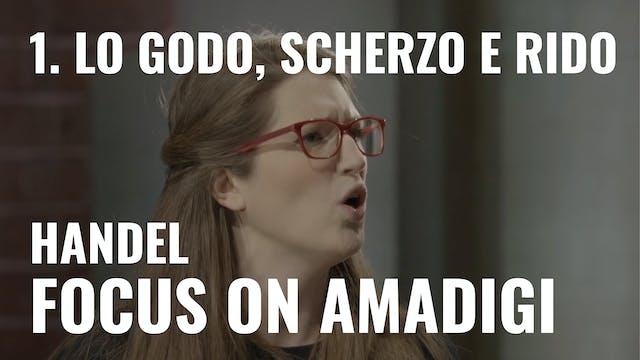 Handel: Amadigi - 1. Io godo, scherzo...