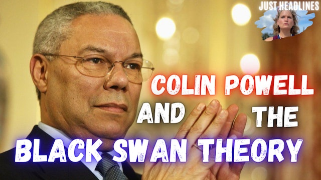 Colin Powell And The Black Swan Theory