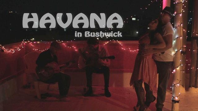Havana In Bushwick