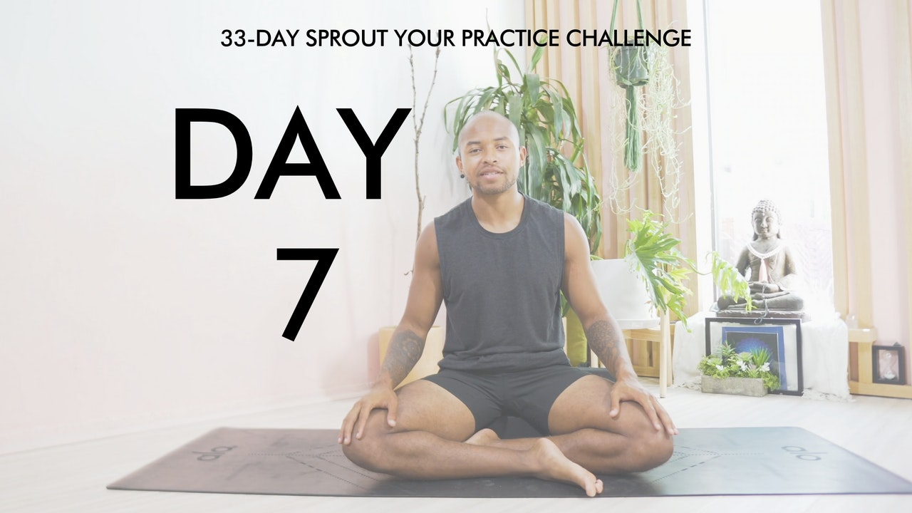 Day 7 Sprout Your Practice: Yoga Nidra