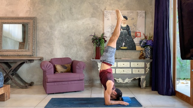 Flow into Forearm Stand: Power Vinyasa with Paul Teodo