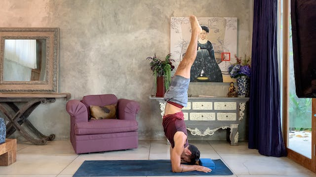 Flow into Forearm Stand: Power Vinyas...