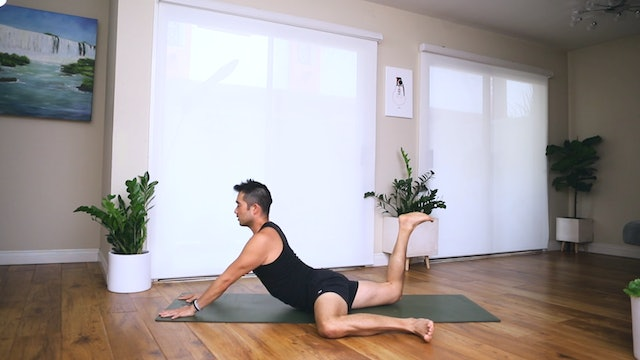 Vinyasa: Full Body Mobility Recovery Flow