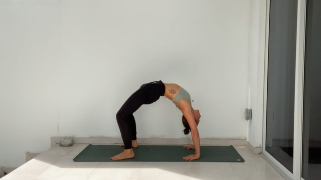 Creating Space in Front Body: Mobility Vinyasa with Kim Colletti