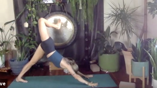 Seed of the Heart: Bhakti Vinyasa with Christine Anderson (LIVE RECORDING)