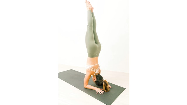 Flow into Forearm Stand