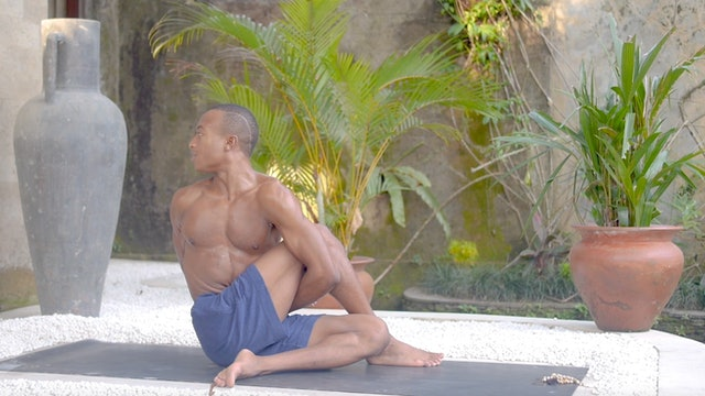 Root Chakra: Chakra Vinyasa Series with Andrew Sealy