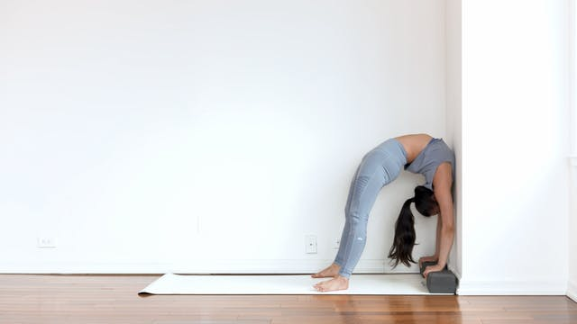 Wheel Pose: Posture Breakdown with Me...