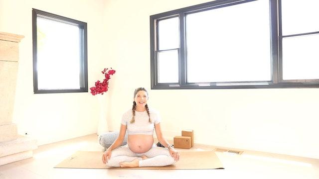 Warrior Mama Flow: Third Trimester Prenatal Yoga Series with Andrea Bogart