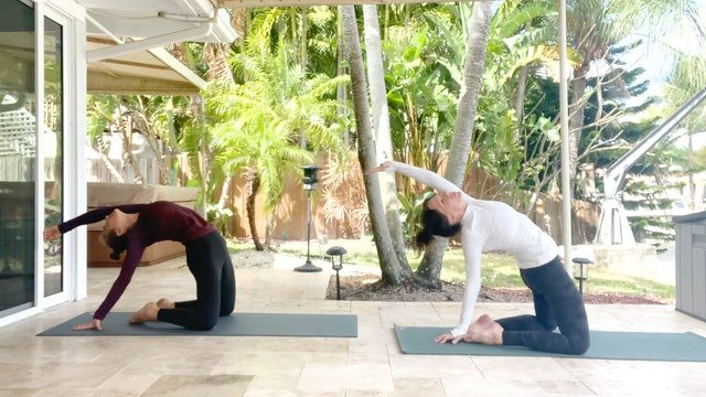 Open Heart, Open Hips: Mobility Vinyasa with Kim Colletti
