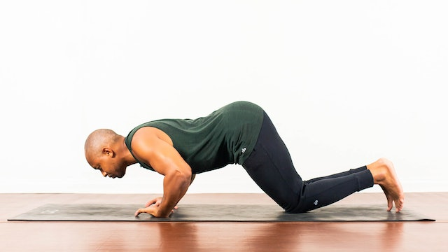 Mastering Chaturanga + Wrist Prep with De'andre Sinette