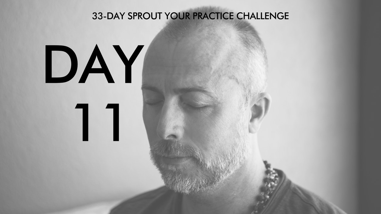 Day 11 Sprout Your Practice: Enter Your Flow State