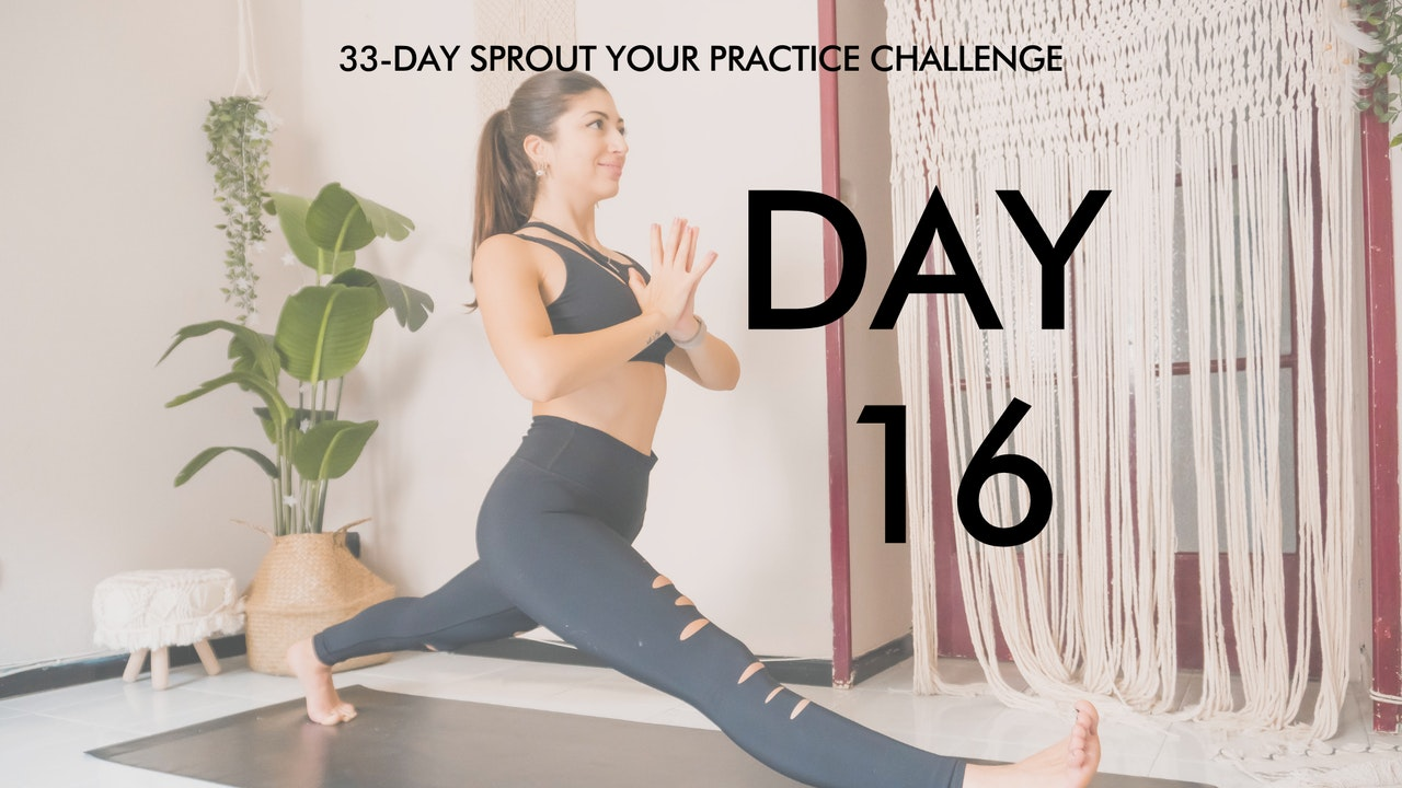 Day 16 Sprout Your Practice: Hamstrings and Hips