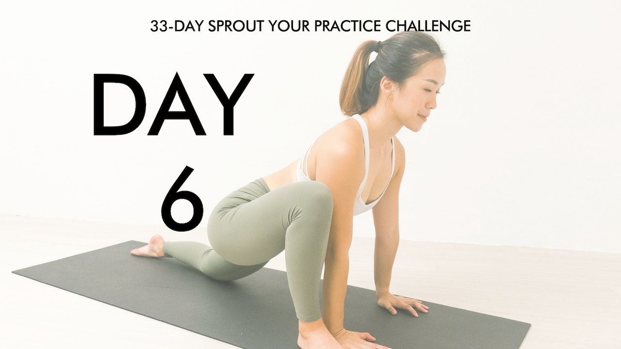 Day 6 Sprout Your Practice: Beginner Flexibility Flow