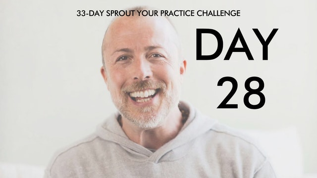 Day 28 Sprout Your Practice: Meditation 101