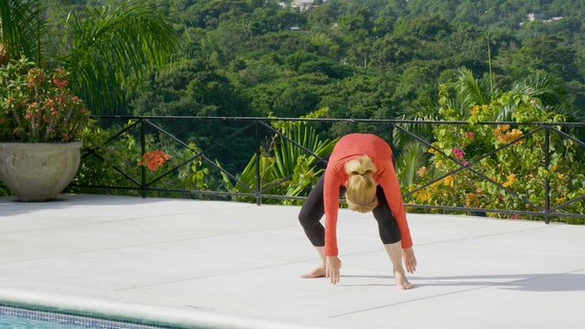Day 20 Release and Rebuild Your Fascia