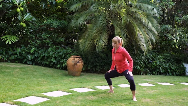 Full Body Workout Vol.3 with Miranda Esmonde-White