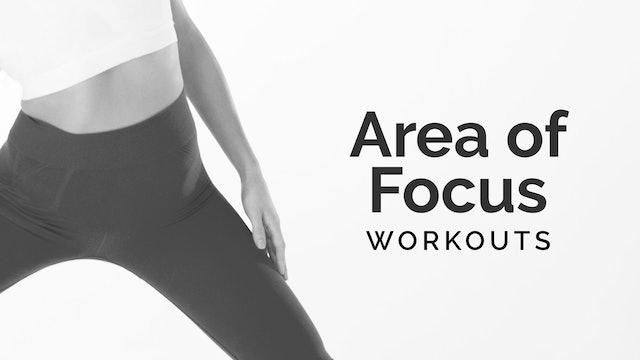 Area of Focus