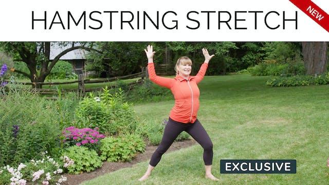 Season 14: Hamstring Stretch