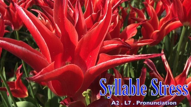 A2.L7 Syllable Stress Pronunciation